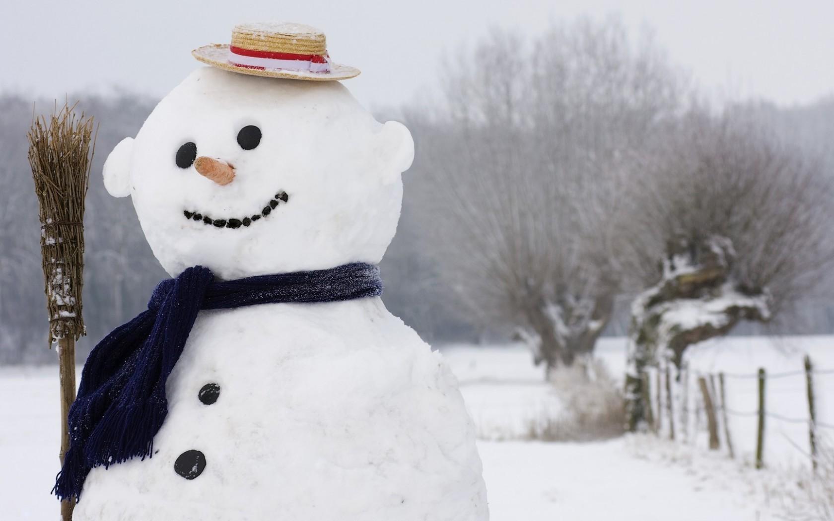 картинки сексуального снеговика-пэ1
